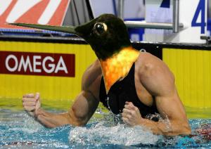 Colibri zwemmer