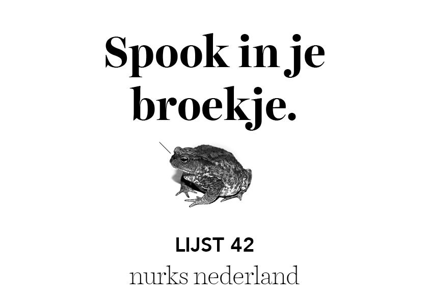 Nurks Nederland